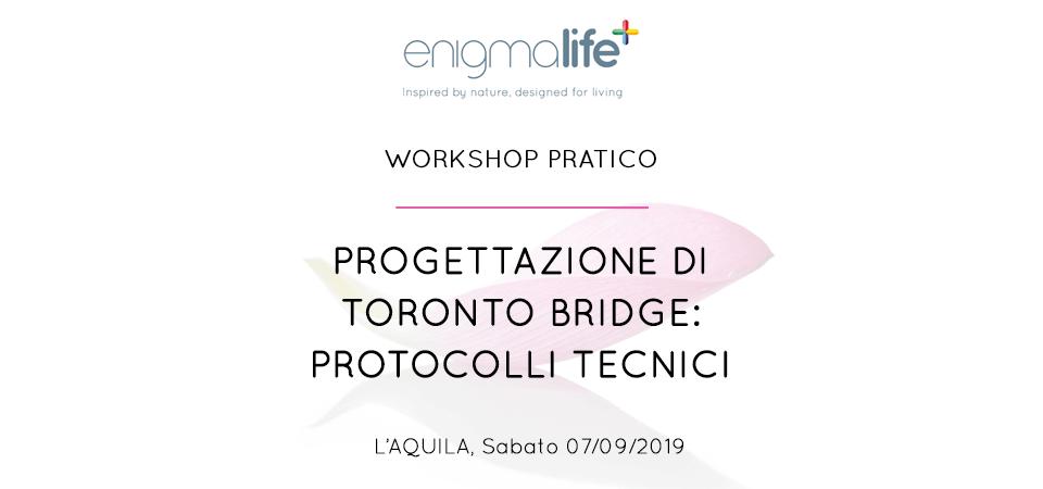 Progettazione di Toronto Bridge: protocolli tecnici